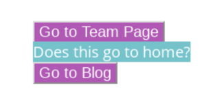 The words Go to Team Page on a purple background, Does this go to home on orange, and Go to Blog on purple.