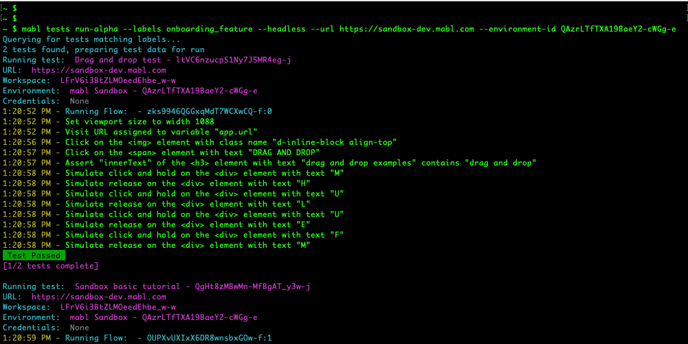 A screenshot of green, red and yellow code on a black screen that is a CI Runner.